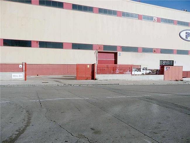 Nave industrial en alquiler en calle Miño, Can palet en Terrassa - 304206442