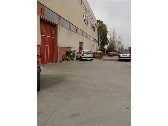 Nave industrial en alquiler en calle Miño, Can palet en Terrassa - 304206445