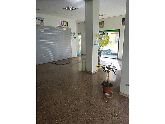 Local comercial en alquiler en Ca n'Aurell en Terrassa - 321548656