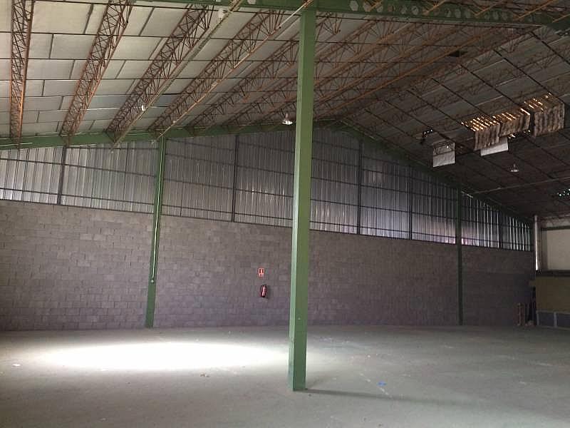Foto - Nave industrial en alquiler en calle Montalvo, Salamanca - 303483362