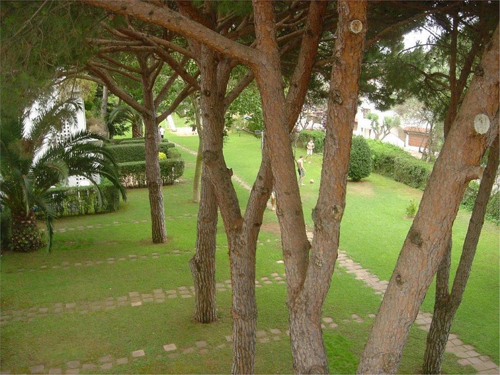 Apartamento en alquiler en calle Lliris, Platja d´aro - 348319852