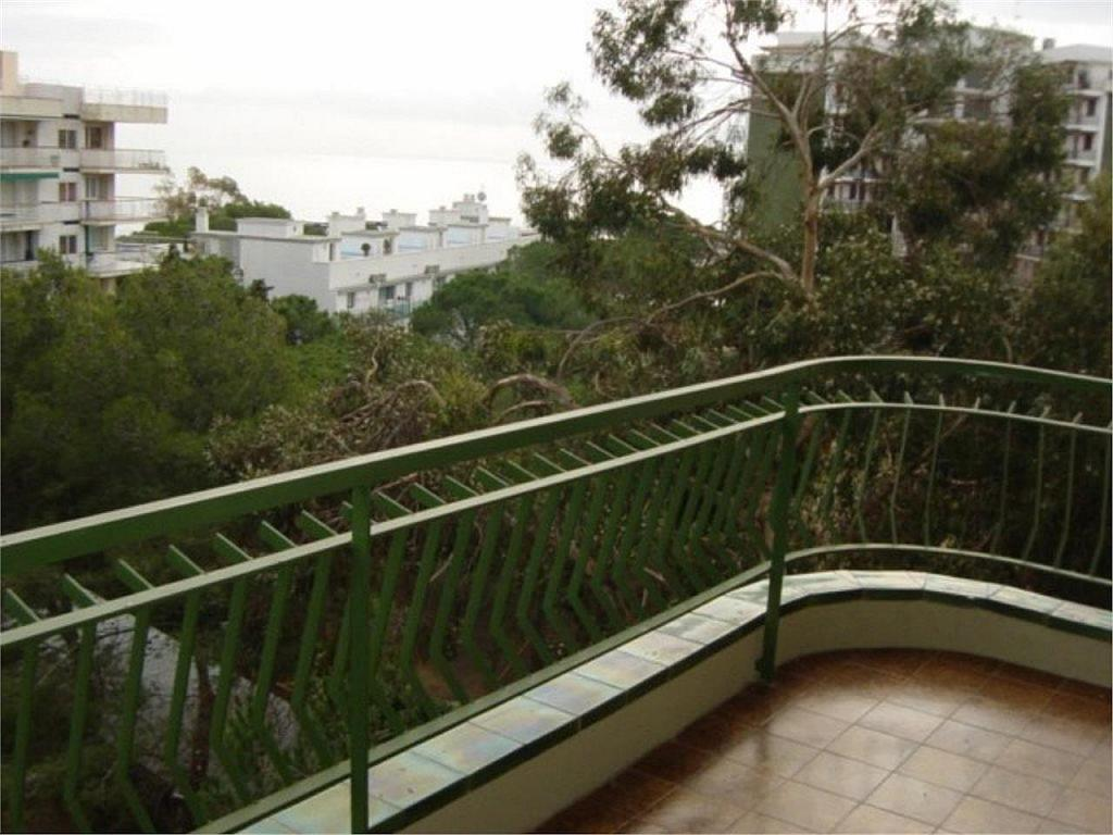 Apartamento en alquiler en calle Punta Dels Escuts, Platja d´aro - 348320782