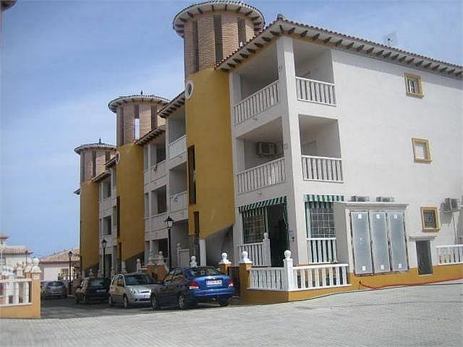 Piso en alquiler opción compra en La Marina del Pinet - 127819220