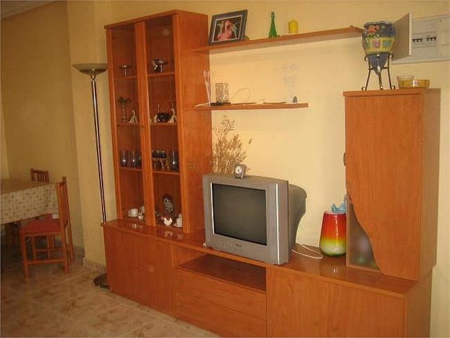 Piso en alquiler opción compra en La Marina del Pinet - 127819226