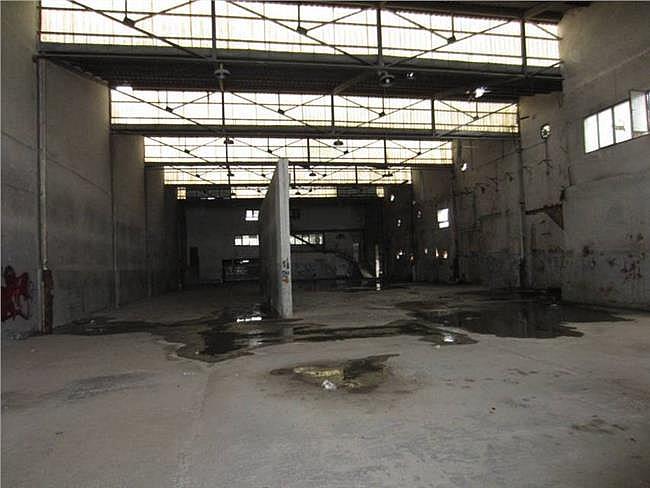 Nave industrial en alquiler en Elche/Elx - 127819500