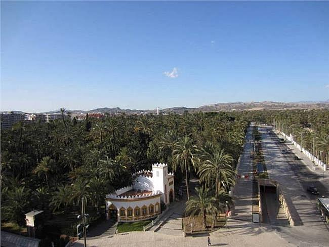 Piso en alquiler en El Raval - Centro en Elche/Elx - 127819624