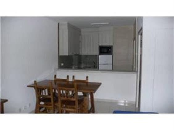 Piso en alquiler en calle Portell de Coll, Ordino - 241049736