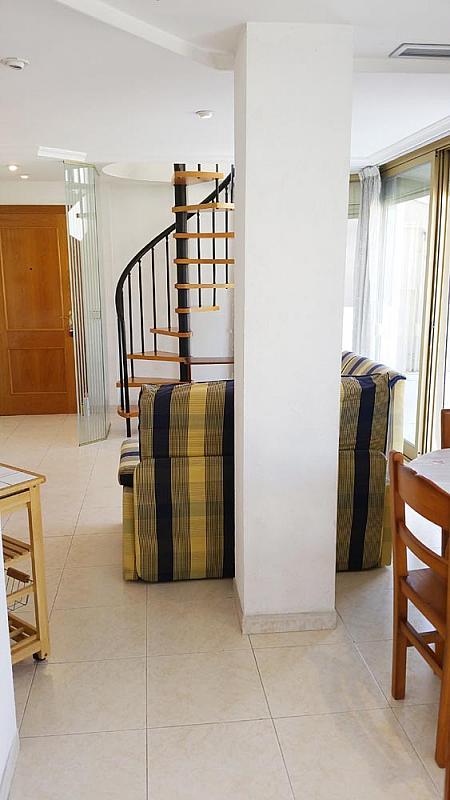 Ático-dúplex en alquiler en calle Perez Galdos, Foners en Palma de Mallorca - 316033962