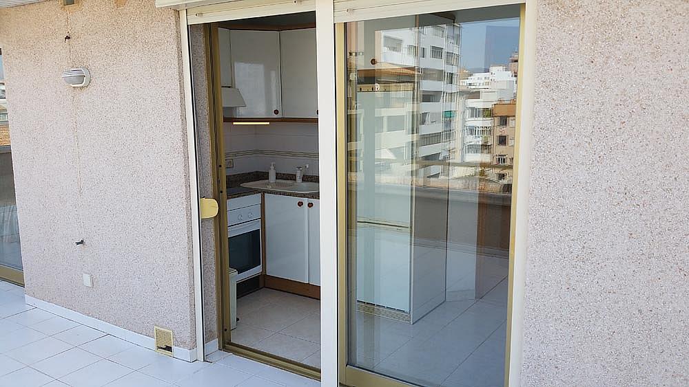 Ático-dúplex en alquiler en calle Perez Galdos, Foners en Palma de Mallorca - 316033978