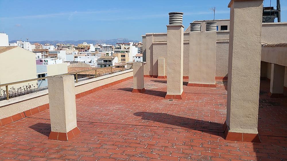 Ático-dúplex en alquiler en calle Perez Galdos, Foners en Palma de Mallorca - 316033982