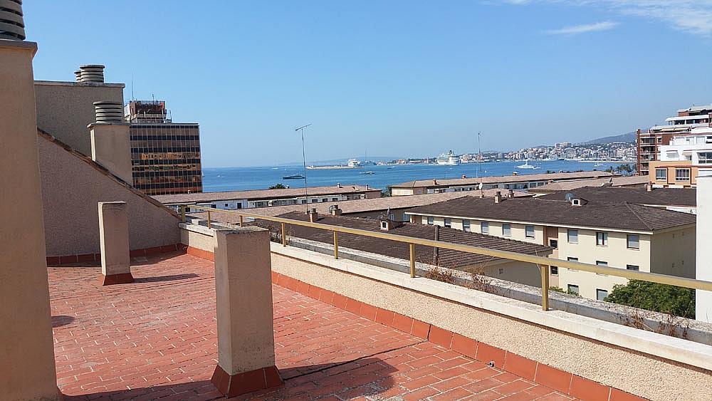Ático-dúplex en alquiler en calle Perez Galdos, Foners en Palma de Mallorca - 316033987