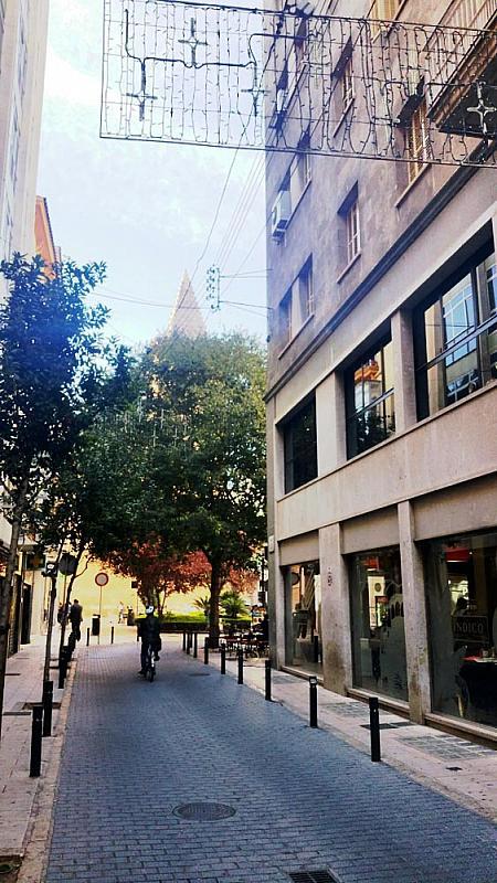 Oficina en alquiler en calle Vilanova, Sindicat en Palma de Mallorca - 223681266