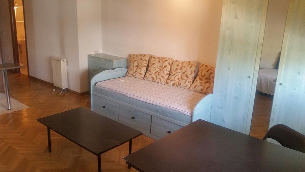Estudio en alquiler en calle Oropendola, Pizarrales en Salamanca - 318884413