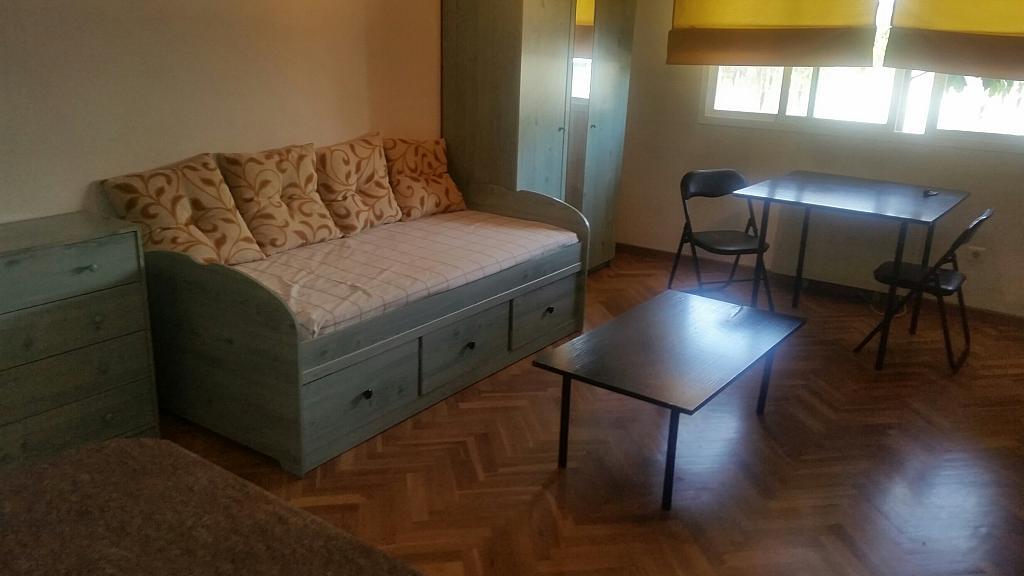 Estudio en alquiler en calle Oropendola, Pizarrales en Salamanca - 318884433