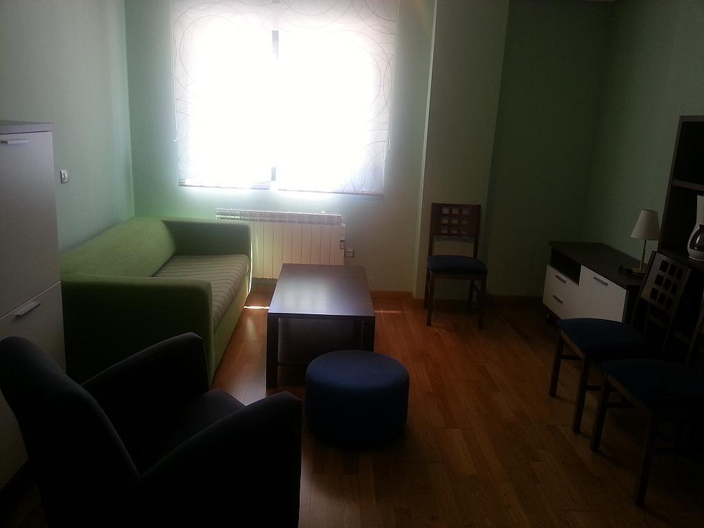 Estudio en alquiler en calle Luis Sala Balust, Pizarrales en Salamanca - 123863204
