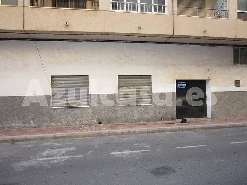 Foto - Local comercial en alquiler en calle Playa de Los Naufragos, Torrevieja - 273533468
