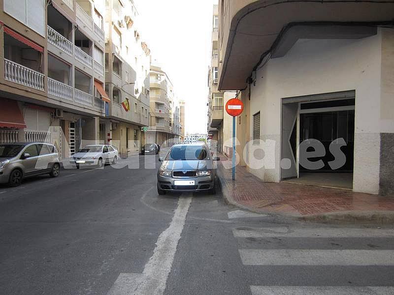 Foto - Local comercial en alquiler en calle Playa de Los Naufragos, Torrevieja - 273533471