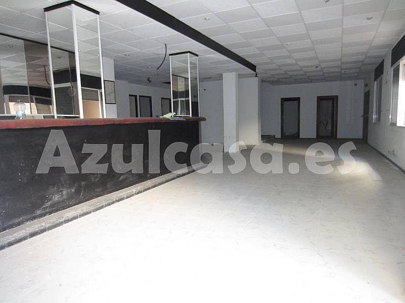 Foto - Local comercial en alquiler en calle Playa de Los Naufragos, Torrevieja - 273533477