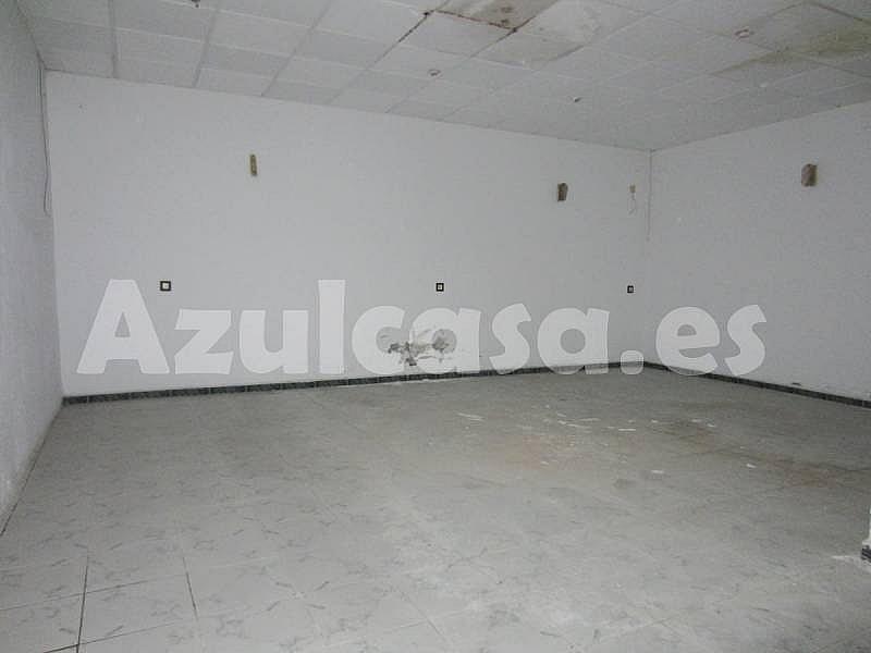 Foto - Local comercial en alquiler en calle Playa de Los Naufragos, Torrevieja - 273533486