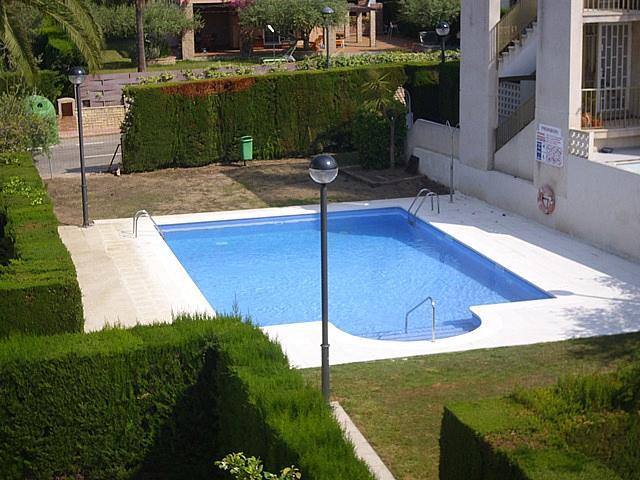 Piscina - Apartamento en venta en calle Austral, Tarraco en Cambrils - 258914634