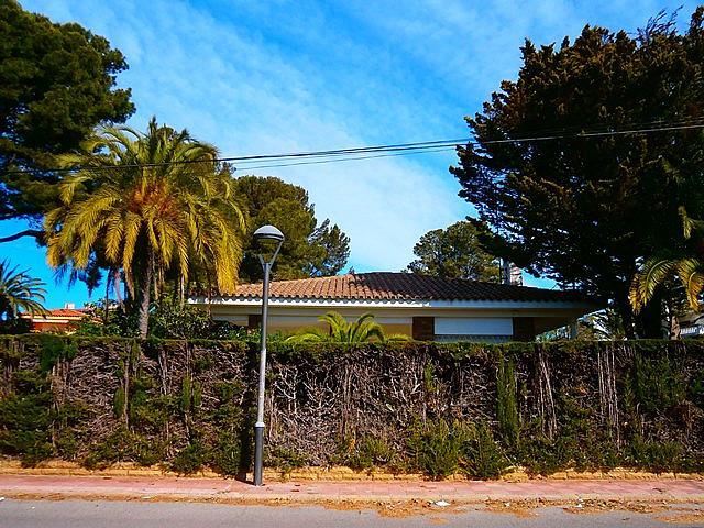 Fachada - Chalet en alquiler de temporada en calle Pluto, Tarraco en Cambrils - 262917689