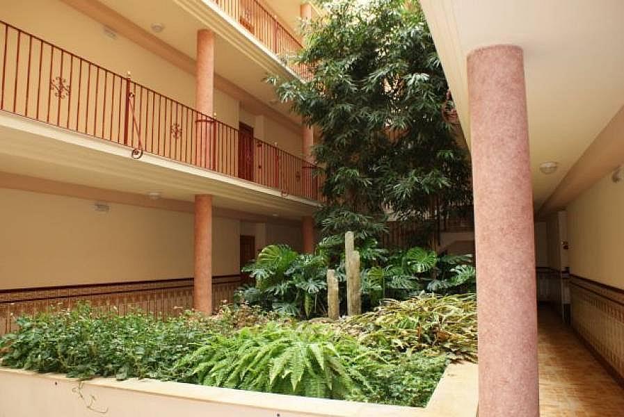 Foto - Apartamento en venta en Sant Carles de la Ràpita - 315773913