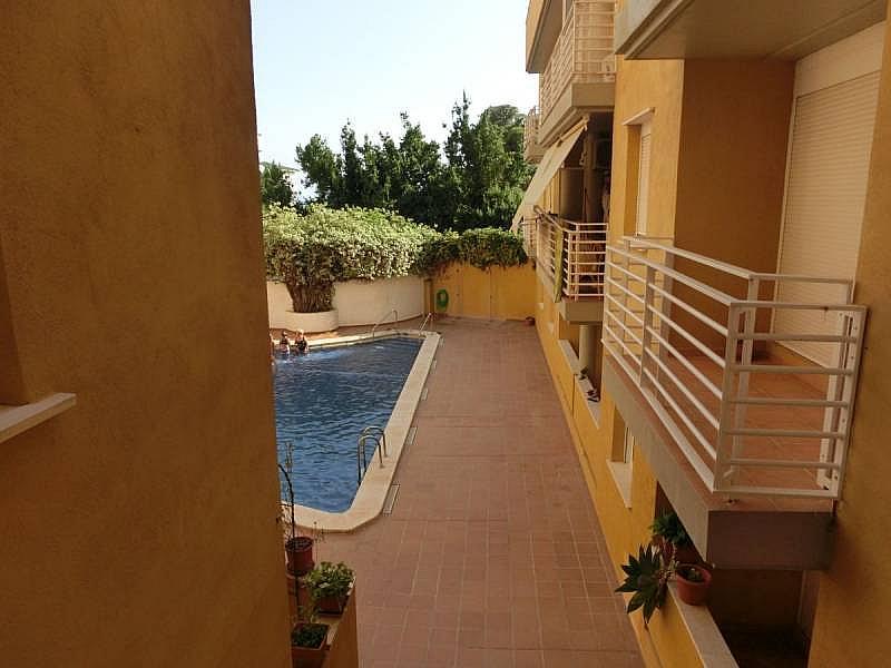 Foto - Apartamento en venta en Alcanar - 331531093