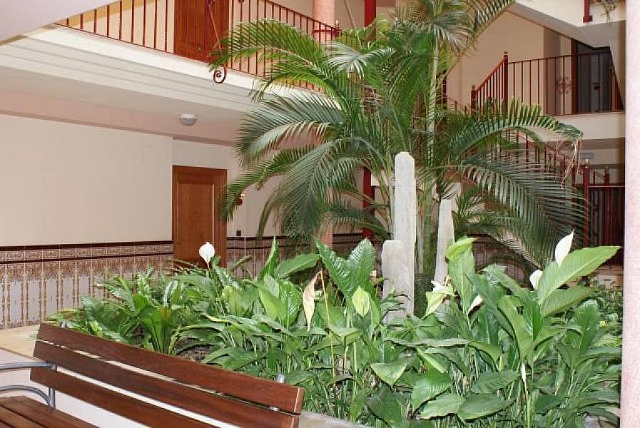 Foto - Apartamento en venta en Sant Carles de la Ràpita - 184617213