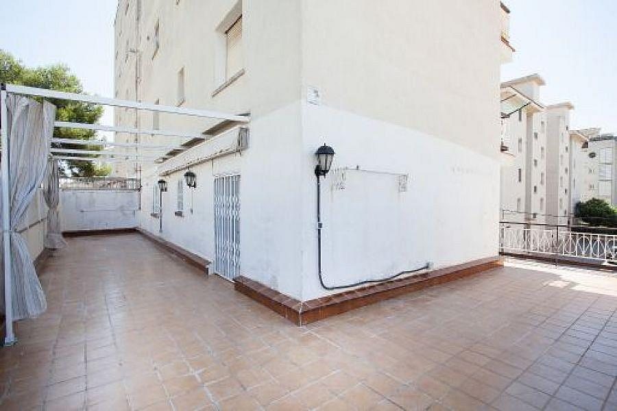 Foto - Piso en alquiler en calle Bellvei, Sol Cunit en Cunit - 319247420