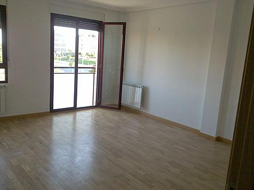 Dúplex en alquiler en calle Alcalde Jose Maria Blanc, Universidad en Albacete - 352185932
