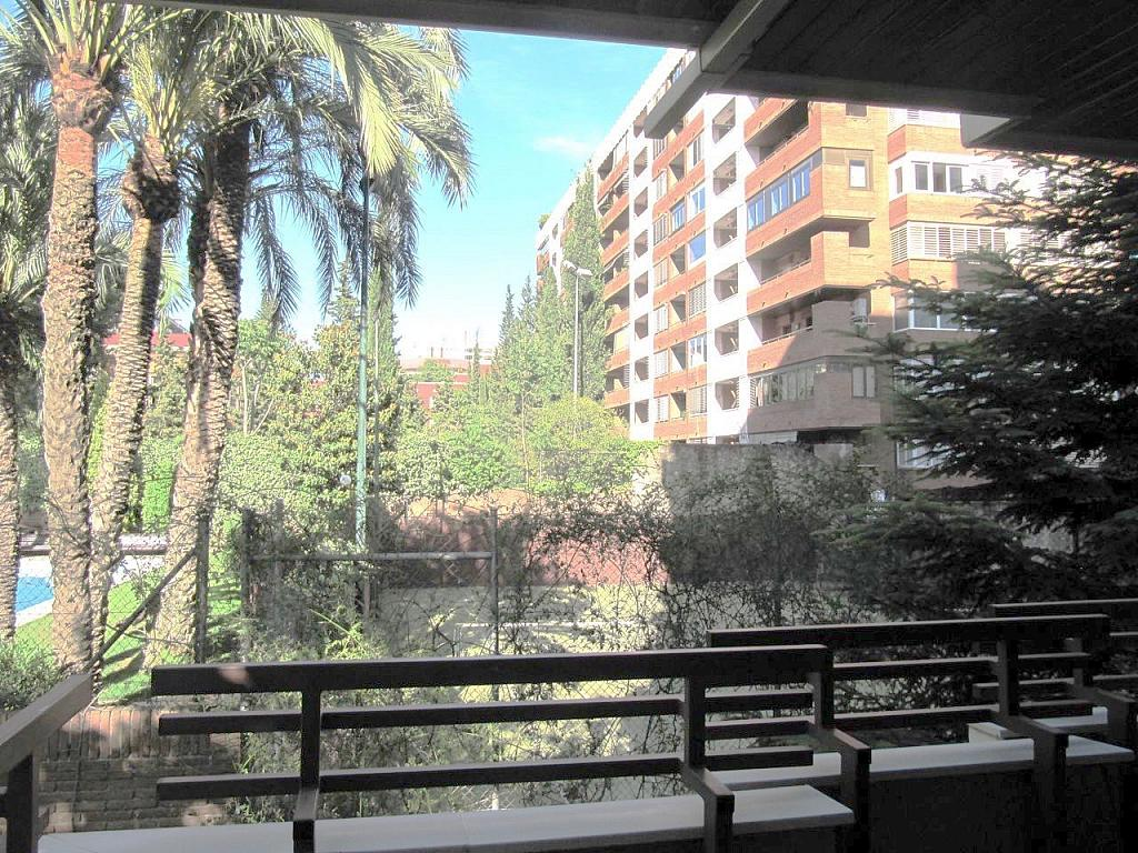 Oficina en alquiler en calle Doctor Ferran, Pedralbes en Barcelona - 249999071