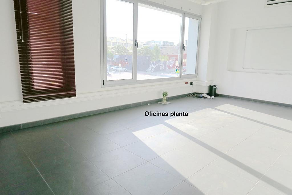 Nave industrial en alquiler en calle Montilla, Les Planes en Sant Joan Despí - 310552327