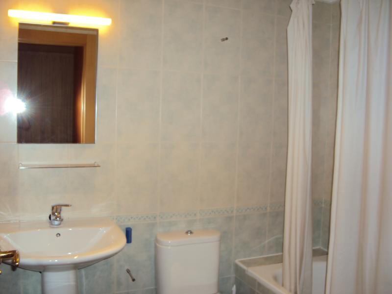 Baño - Apartamento en alquiler en calle Matematicas, Universidad en Albacete - 52618266