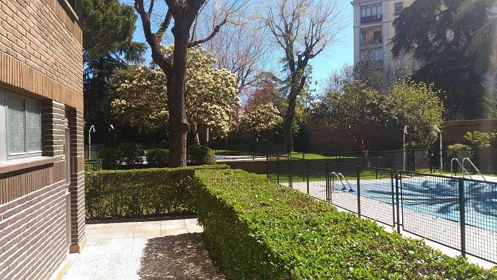 Oficina en alquiler en calle De Menéndez Pelayo, Niño Jesús en Madrid - 361473037