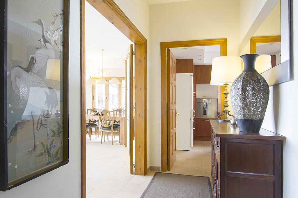 Casa en alquiler en Premià de Dalt - 275522142