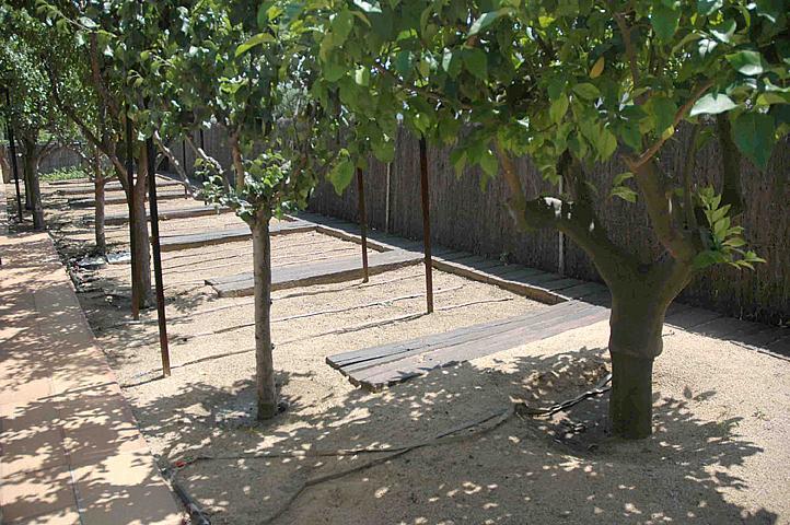 Casa en alquiler en Sant Andreu de Llavaneres - 303457150