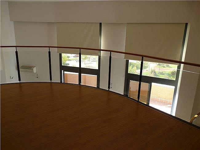 Loft en alquiler en calle Isla Graciosa, San Sebastián de los Reyes - 323173787