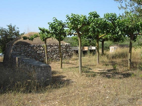 Terreno en alquiler en carretera De la Riera, Torredembarra - 204204480