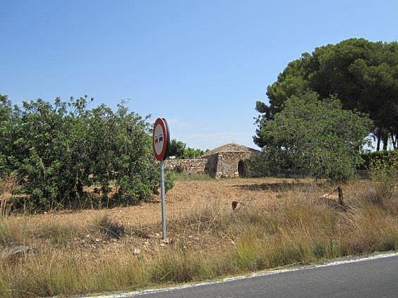 Terreno en alquiler en carretera De la Riera, Torredembarra - 204204483