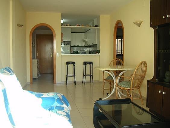 Apartamento en alquiler en calle Tarragona Comodoro, Torredembarra - 219885636