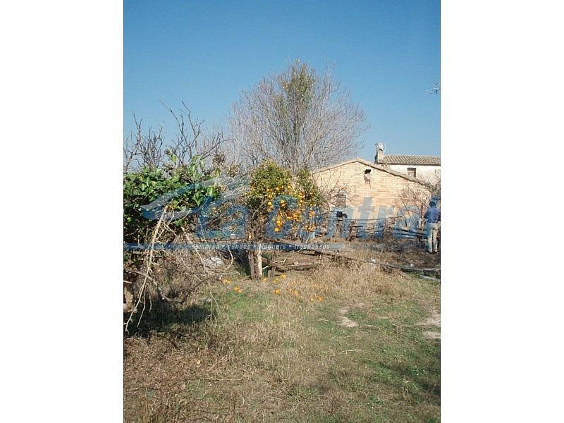 P2070023 - Finca rústica en alquiler en Tortosa - 275170534