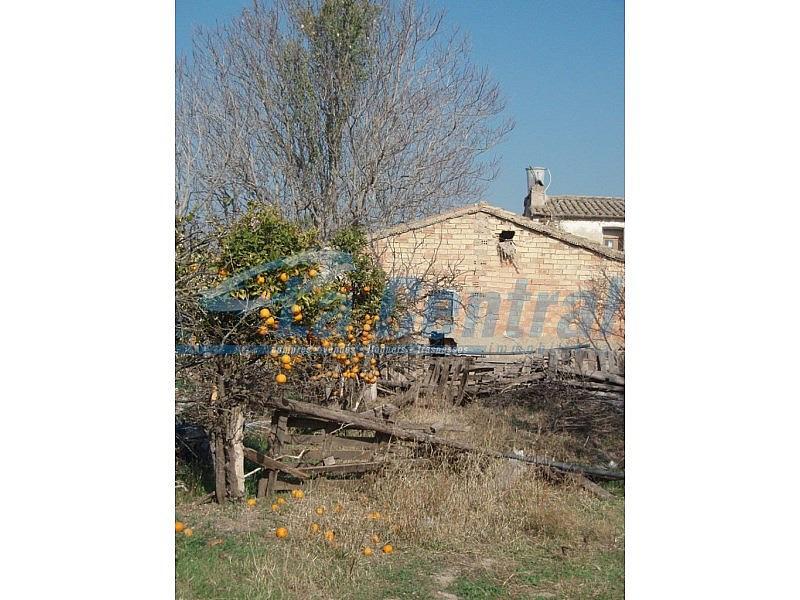 P2070024 - Finca rústica en alquiler en Tortosa - 275170537