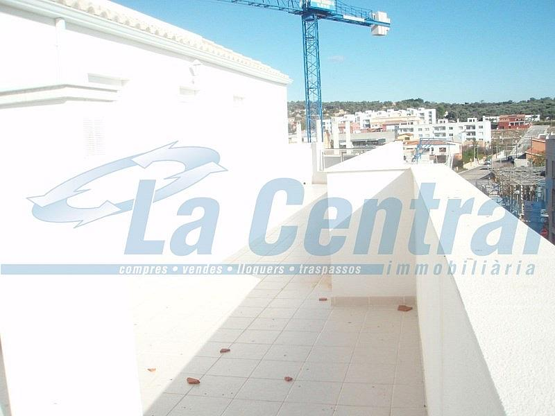 Terrassa1 - Piso en alquiler en calle Sant Carles Núm Àtic Altura Atico, Sénia, la - 279485245