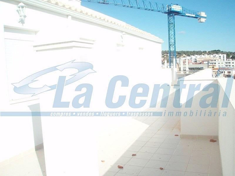 Terraza 2 - Piso en alquiler en calle Sant Carles Núm Àtic Altura Atico, Sénia, la - 279485281