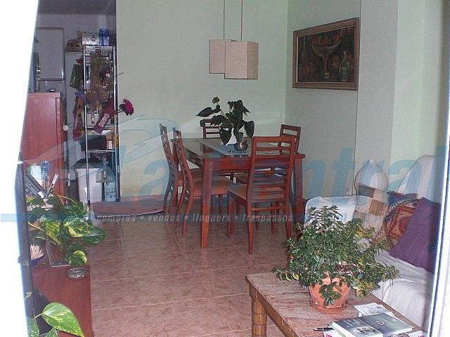 MenjIII - Piso en alquiler en Tortosa - 328213716