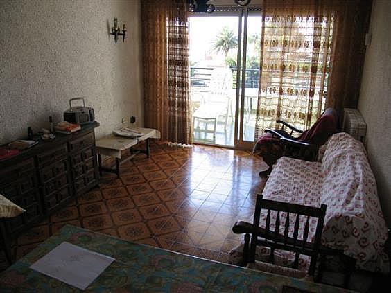 IMG_4329 - Apartamento en venta en Mont-Roig del Camp - 136461198