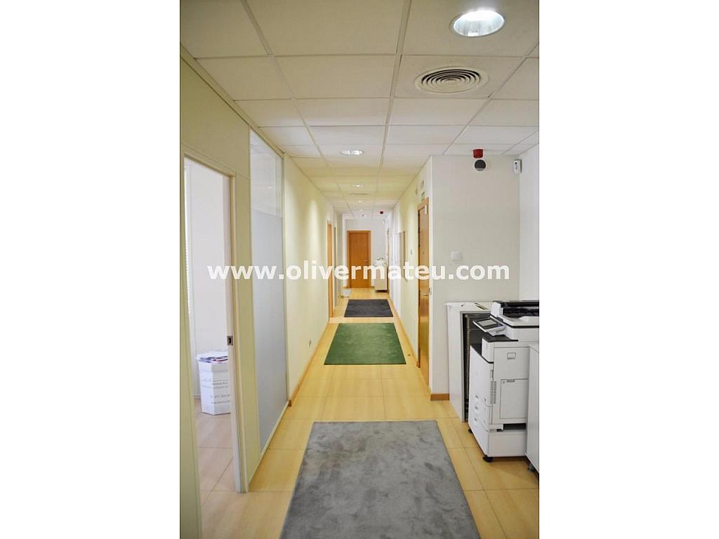 Despacho en alquiler en Urbanitzacions Llevant en Palma de Mallorca - 303368470