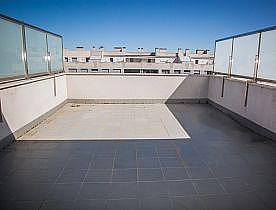 Terraza - Piso en alquiler en calle Alfonso V de Aragon, Delicias en Zaragoza - 239832239