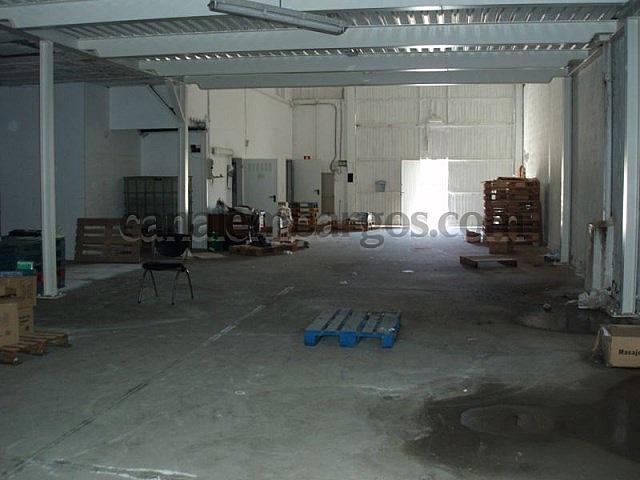 Interior - Nave industrial en alquiler opción compra en calle Carretera Aldea de la Valdoncina, Valverde de la Virgen - 242295882