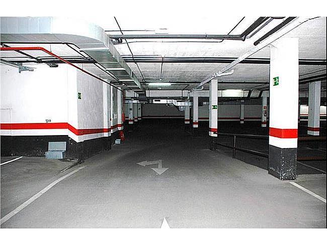 Oficina en alquiler en calle Paseo de la Castella, Chamartín en Madrid - 267577124